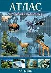 Атлас по география и икономика за 6. клас - учебник