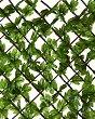 Декоративна ограда с бръшлян - Greenly -