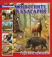 Опознай животните в България: Горските обитатели - Костадин Костадинов - книга