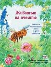 Животът на пчелите - Фридерун Райхенщетер - детска книга