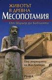 Животът в древна Месопотамия -