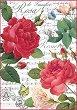 Декупажна хартия - Музика и рози - Формат А4 -