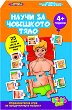 Научи за човешкото тяло - Детска образователна игра - игра