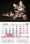 Стенен календар - Котка 2020 -
