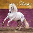 Стенен календар - Horses 2020 - календар
