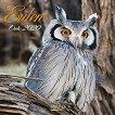 Стенен календар - Owls 2020 -