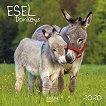Стенен календар - Donkeys 2020 -