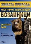 Живата природа: Бозайници - Златозар Боев - книга