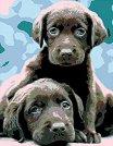 Рисуване по номера с акрилни бои - Кученца - Комплект за картина с размери 35 x 45 cm -