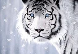 Бял тигър - Джон Ратенбъри (Jon Rattenbury) -
