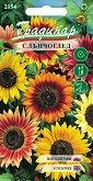 """Семена от Слънчоглед Есенна красавица - микс от цветове - Опаковка от 1 g от серия """"Градинар: Цветя"""""""