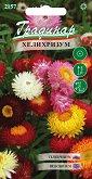 """Семена от Хелихризум - микс от цветове - Опаковка от 0.5 g от серия """"Градинар: Цветя"""""""