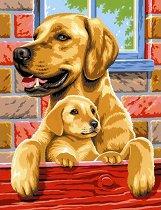 Нарисувай сам шедьовър - Кучета - Творчески комплект -