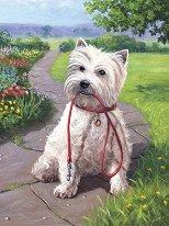 Рисуване по номера с акрилни бои - Време за разходка - Комплект за картина с размери 22 x 30 cm - продукт
