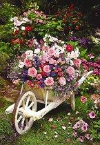 Градински цветя -