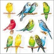 Салфетки за декупаж - Папагалчета - Пакет от 20 броя