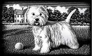 Кученце - Скреч картина с размери 11 x 18 cm