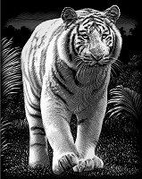 Тигър - Скреч картина с размери 20 x 25 cm