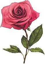 Стикери за декорация - Рози
