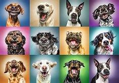 Портрети на кучета - пъзел