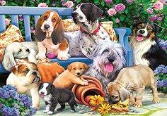 Кучета в градината - Даниела Пирола (Daniela Pirola) -