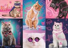 Супер котки -