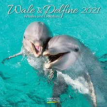 Стенен календар - Wale und Delfine 2021 -