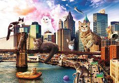 Котки в Ню Йорк -
