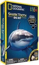 Изкопай сам - 3 зъба на акули - Детски образователен комплект -