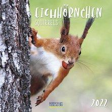 Стенен календар - Eichhornchen 2022 -