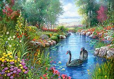 Черните лебеди - пъзел