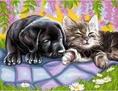 Нарисувай сам шедьовър - Куче и коте - Творчески комплект -