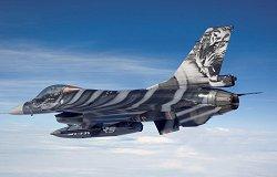 """Изтребител - F-16 Mlu """"Tigermeet 09"""" - Сглобяем авиомодел - макет"""